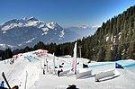Coop Skicross FIS World Cup - Grindelwald - Meiringen-Hasliberg (1454-56).jpg