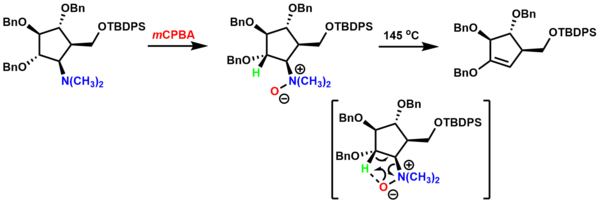 Oxidative Amination Mechanism Cyclic Amine Oxides 5