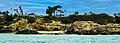 Corona del Mar Cliffs photo D Ramey Logan.jpg