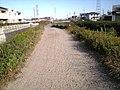 Cortando caminho - panoramio.jpg