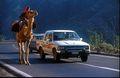 Country Road near Asmara.jpeg