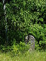 Culture Trail - Kirkut in Kierkow - Gmina Zarki Powiat Myszkowski 13 -.JPG