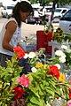 Cut Flowers for Sale at Farmers Market - 49909694913.jpg