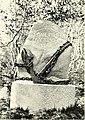DEMIDOV(1904) p121 MONUMENT TO LA PEROUSE (PETROPAVLOVSK) (14595970897).jpg