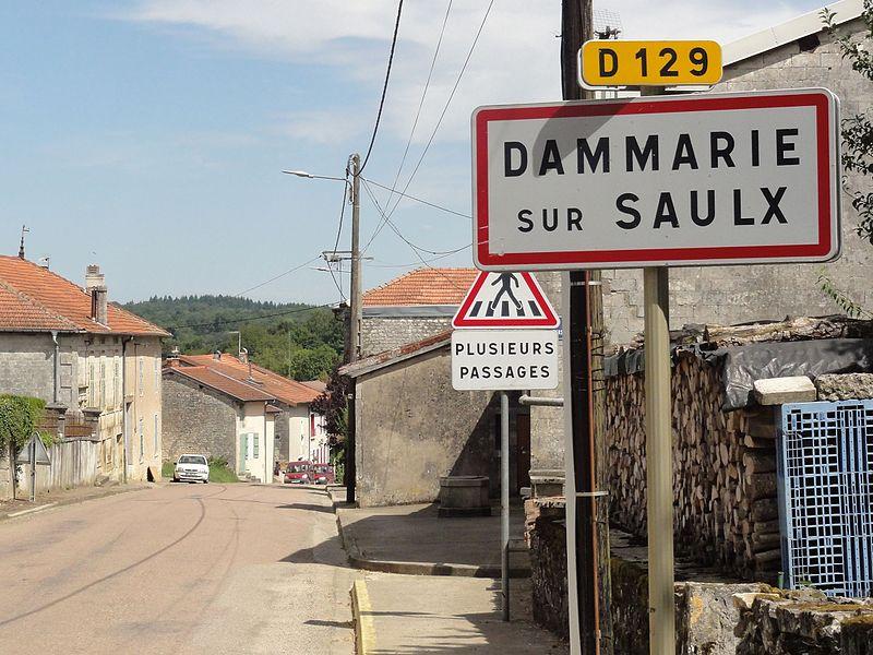 Dammarie-sur-Saulx (Meuse) city limit sign