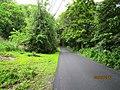 Deep Green Forest Sholayar - panoramio (1).jpg