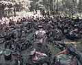 Defense.gov News Photo 980718-A-1067B-034.jpg