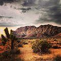 Desert landscape, Nevada (19971358442).jpg