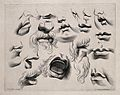Designs showing the lower half of the face in various physio Wellcome V0009408.jpg