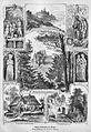 Die Gartenlaube (1873) b 766.jpg