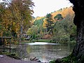 Dimmingsdale - geograph.org.uk - 129338.jpg