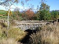 Disused bridge - geograph.org.uk - 578056.jpg