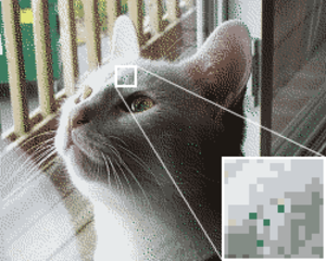 Comparison of analog and digital recording - An illustration of dither used in image processing. A random deviation has been inserted before reducing the palette to only 16 colors, which is analogous to the effect of dither on an audio signal.