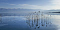 Dojran Lake 211.jpg