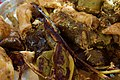 Dolma (stuffed vegetables) enjoyed near Akre, in Duhok Governorate, the Kurdistan Region of Iraq DSC 3744.jpg