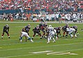 Dolphins 11-11-2007 015 (cropped).jpg