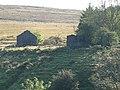 Dorwen Farm - geograph.org.uk - 963246.jpg