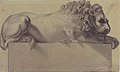 Drawing after a Lithograph of a Recumbent Lion. MET 49.116.26.jpg
