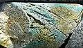 Drill core (Butte Mining District, Montana, USA) 2.jpg