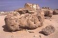 Dunst Oman scan0241 - Steingarten.jpg