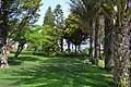EUPHORIA PALM BEACH 5 (2015) - panoramio (26).jpg