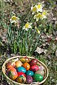 Easter Eggs And Flowers (6695488).jpeg