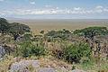 Eastern Serengeti 2012 05 31 2841 (7522636990).jpg