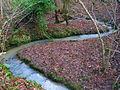 Eggshole Brook, Timber Wood - geograph.org.uk - 335261.jpg