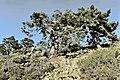 El Espinar, cumbres 01.jpg