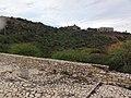 El Morro, Lecheria, Anzoategui, Venezuela - panoramio (33).jpg