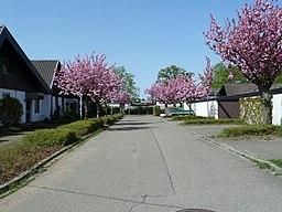 Elfenweg in Karlsruhe