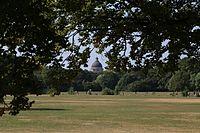 Englischer Garten Sommer Muenchen-1.jpg