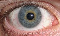 200px-Eye_Central_ ...