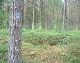 Fångstgrop Hoting 070715.JPG