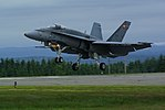 F18 Fly past gear out.jpg
