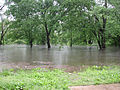 FEMA - 7810 - Photograph by Anita Westervelt taken on 05-17-2002 in Missouri.jpg