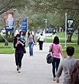 FIU students walking to class.jpg