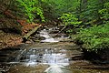 Falls Run (Lower End) (4) (9224218781).jpg