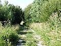 Farm track, Bromhey Farm - geograph.org.uk - 1403364.jpg