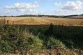 Farmland between Knipton and Croxton Kerrial - geograph.org.uk - 999358.jpg