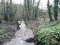 Fast-flowing river - geograph.org.uk - 678608.jpg