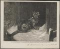 Felis catus - 1863 - Print - Iconographia Zoologica - Special Collections University of Amsterdam - UBA01 IZ22100262.tif