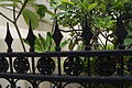 Fence of Maghain Aboth Synagogue, Singapore - 20110909.jpg