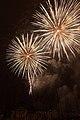 Fireworks - July 4, 2010 (4773763178).jpg
