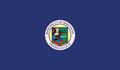 Flag of Babatngon, Leyte.png