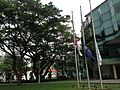 Flags at half staff to mark the death of Lee Kuan Yew, College Green, Singapore Management University - 20150323-03.jpg