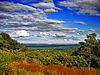 Flickr - Nicholas T - Viewpoint.jpg