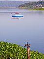 Flickr - archer10 (Dennis) - Guatemala-1761.jpg