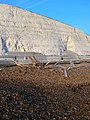Floatsam and Jetsam, Saltdean Beach - geograph.org.uk - 669733.jpg