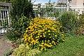 Flower @ Square Charles-Péguy @ Coulée Verte René-Dumont @ Paris (29233676036).jpg